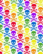 rainbow skulls.jpg