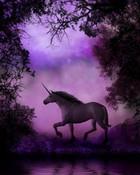 EnchantedUnicorn.jpg
