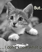 puzzled-kitty[1].jpg