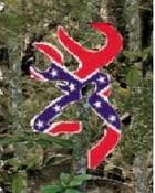 rebel flag deer in camo.JPG