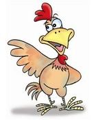 bob the chicken!