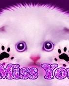 i miss u kitty.jpg