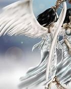 Angel-1.jpg