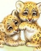 The Spotted Leopard.jpg