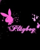PlayBoy-Bunny-playboy-5935170-1024-768.jpg