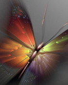 Butterfly_Art.jpg