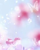Sky_butterfly_flowers.jpg