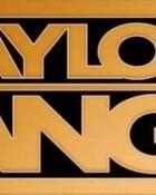 TaylorGang_3.jpg