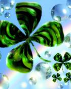 clovers.jpg