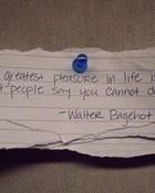 greatest-please-life-doing-people--large-msg-129054110313_thumb.jpeg