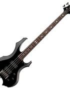 esp ltd bass tom araya