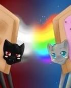 Nyan Cat & Tac Nayn