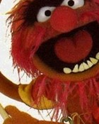muppets-animal.jpg