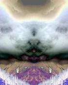 Cloud Bird.jpg