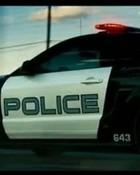 Police_Mustang.jpg
