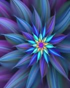 abstract_flower.jpg