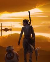 Rey BB 8 Star Wars The Force Awakens