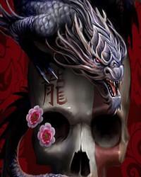 dragon_on_skull-wallpaper-10782758(1).jpg