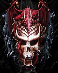Red dragon in skull.jpg
