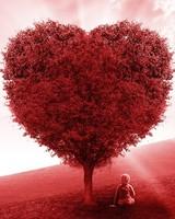 Red Love Heart Tree
