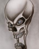 skull595227357.jpg