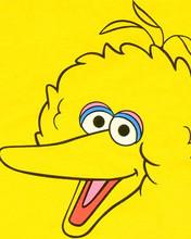 Free big bird.jpg phone wallpaper by nyekaz