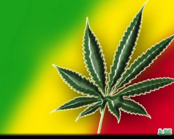 Free Red, Yellow and Green   (Marijuana Weed).JPG phone wallpaper by cacique