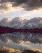 Cloud Reflections and Mt Moran