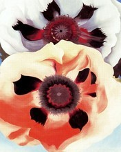 Free Poppies phone wallpaper by miathyria