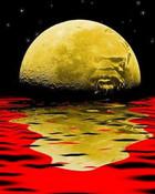 moon flag.jpg