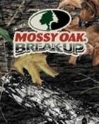 mossy oak.jpg