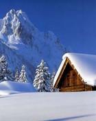 snow483310.jpg