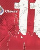 CHiVAs 11 cd.jpg