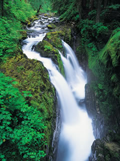 Free Waterfall.jpg phone wallpaper by mccallister8