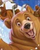 bear.jpg wallpaper 1