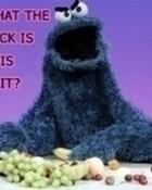 pissed off cookie monster.jpg