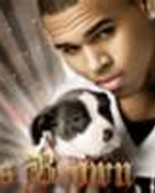 Chris Brown & Pit Puppy