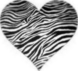 Free zebra-1.jpg phone wallpaper by lilialopez