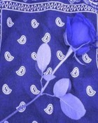 blue roseandrag.jpg