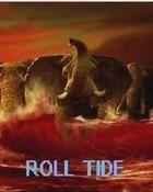 roll_tide_ro.jpg