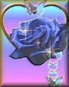butterfly_rose.jpg