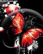 Butterfly-Red.jpg