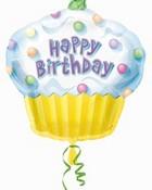 10031_HS_BirthdayCupcake.jpg