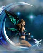 fantasy fairies.jpg