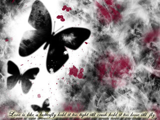 Free Butterfly-2.jpg phone wallpaper by raindropdreams24
