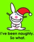 christmas funny bunny.JPG