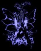 thumbbig-Fantasy-Fairy-24999.jpg