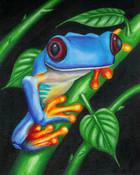 Frog_III.jpg