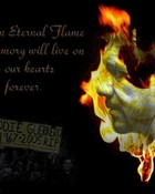 Eddie Tribute