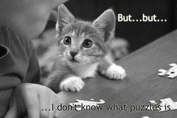 Free puzzled-kitty[1].jpg phone wallpaper by angelicfirehazard22